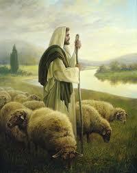 PS 23 Shepherd