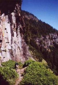 cliff-trail