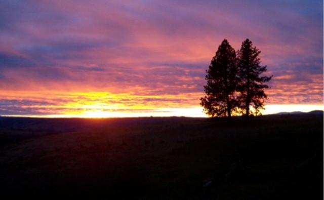 Camus Prairie Sunset-1